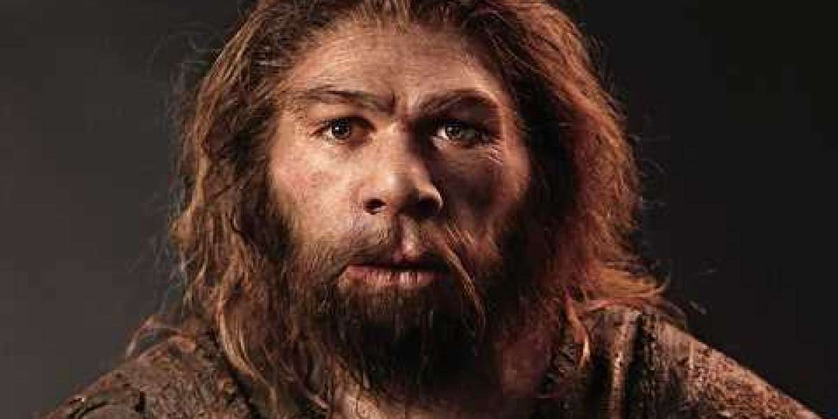Homosexuality Was Introduced By People Who Shared Neanderthal Trait